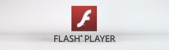 welche flash player version habe ich