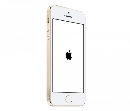 iPhone-5S-Gold-White-Screen-Of-Death